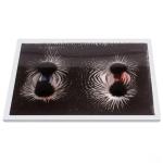 Magnetic Pole Pattern